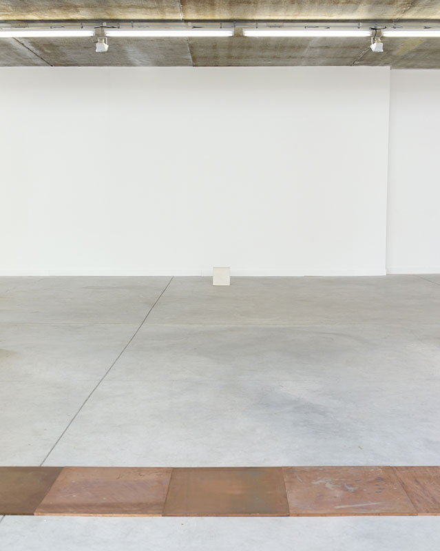 <p>Carl Andre<br class='autobr' /> stanley brouwn</p>